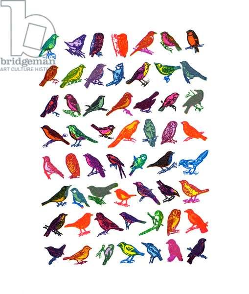 Garden Birds, 2013, (screen print)