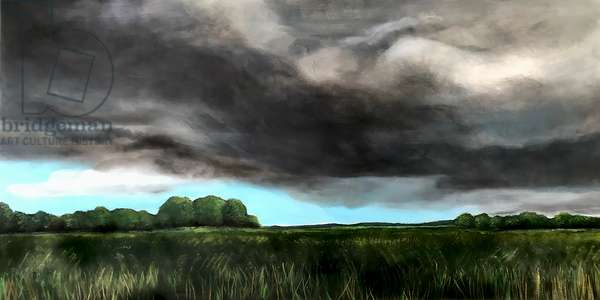 Before the storm' 2020 (acrylic on board'