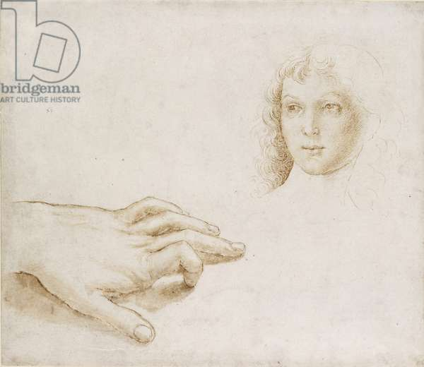 Studies of a Head and a Hand, WA1846.8 (pen & brown ink and wash over leadpoint)