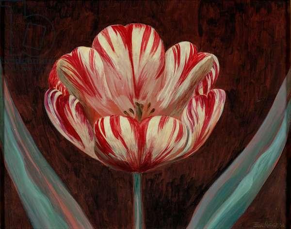 Tulip (mixed media on panel)