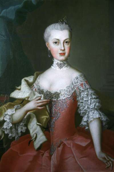 Portrait of a lady with ermine cloak (oil on canvas)