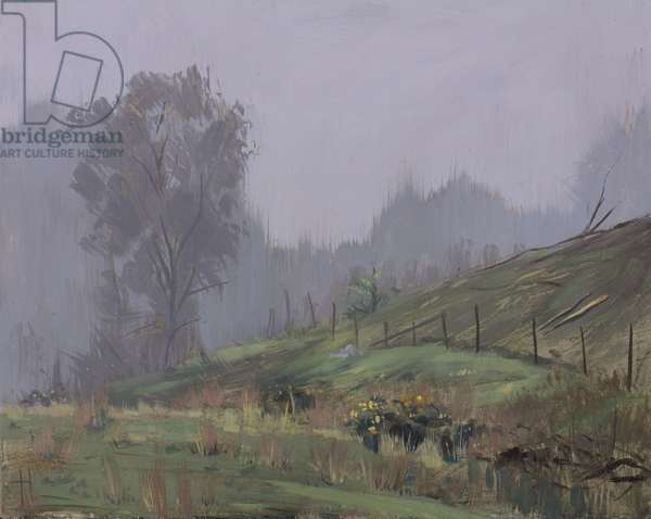 Tree and fence in mist, Talybont, October
