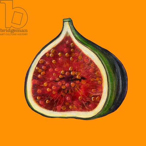 Fig on orange
