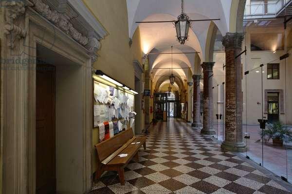 University of Bologna, 1955 - 1961