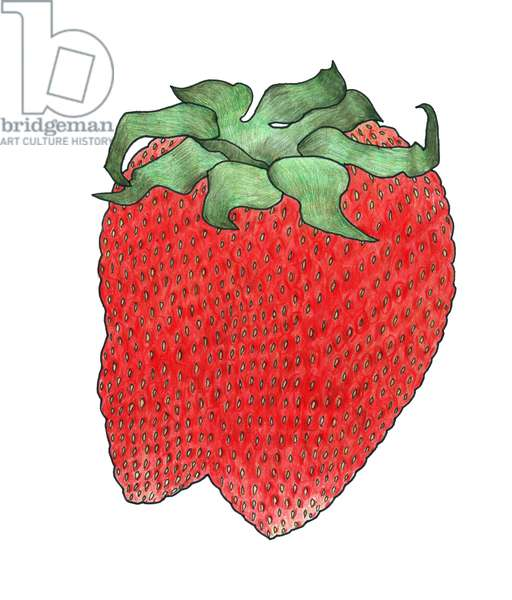 Strawberry 2, 2013, (coloured pencil)
