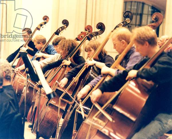 Double Bass Section of