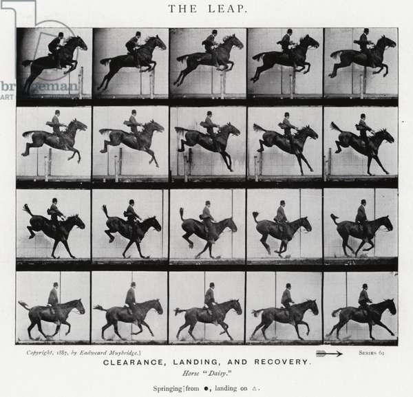Eadweard Muybridge: The Leap (b/w photo)