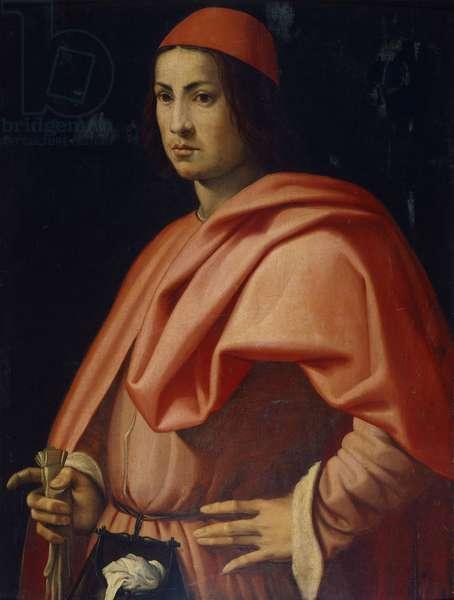 Portrait of a Florentine gentleman, by Jacopo da Pontormo (1494-1557).