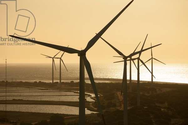 Eolic energy, 2012 (photo)