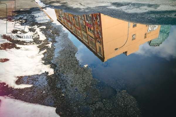 reflections , 2010 , photograph