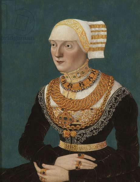 Portrait of a Woman, 1510 (oil on panel)