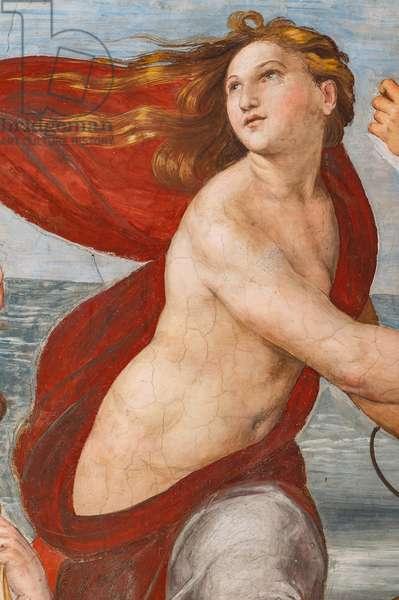 The Triumph of Galatea, 1513-14 (fresco) (detail of 2646174)