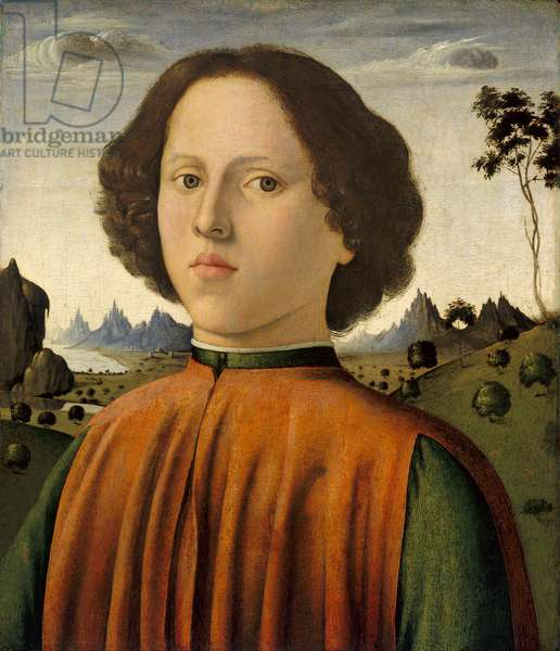 Portrait of a Boy, c.1476/1480 (oil and tempera on panel)