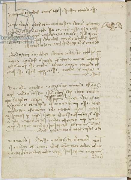 Birds Flight Code, c. 1505-06, paper manuscript, cc. 18, sheet 5 verso
