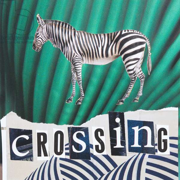 Zebra Crossing, 2019, collage