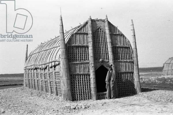 Exterior view of the mudhif (guest house) belonging to Zair Hashim Bidin of the Al Hasan tribe, with a man standing outside the doorway, Iraq, 1955 (b/w photo)