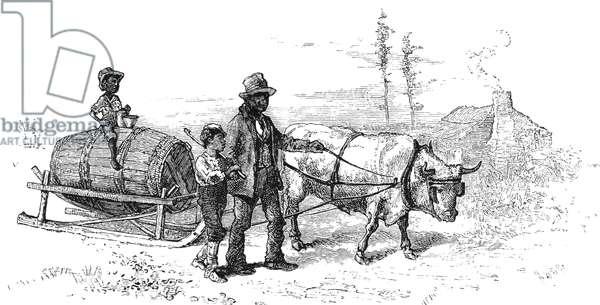 NORTH CAROLINA: SLEIGHING Summer sleighing in western North Carolina. Wood engraving, 1875.