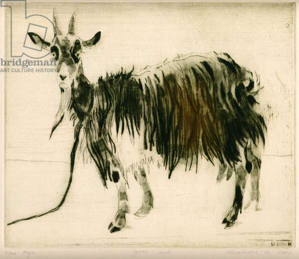 Goat, 2003 (drypoint)