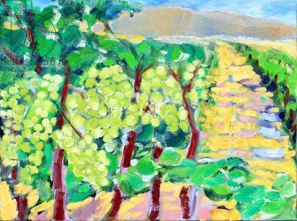 Chardonnay Grapes, Napa, 2019, (oil on canvas)