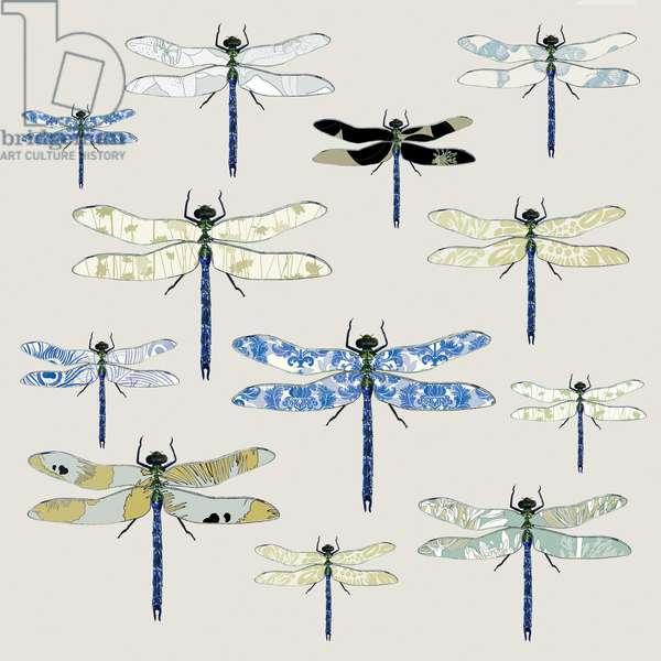 Odonata, 2008 (digital)