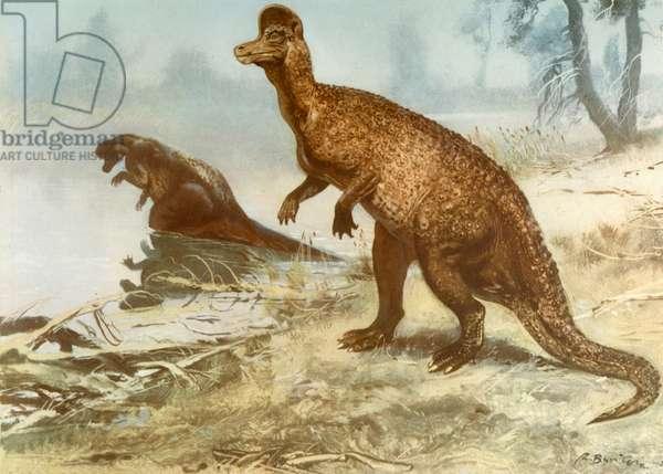Corythosaurus, by Zdenek Burian, 1905-1981