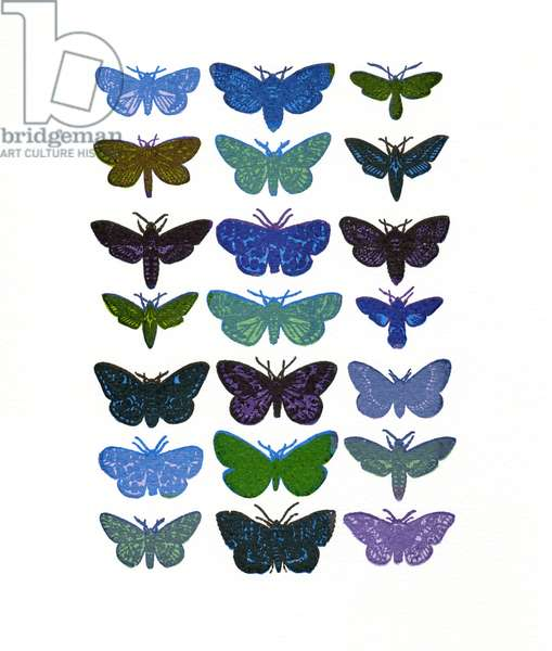 Moths-blue/green, 2013, (screen print)