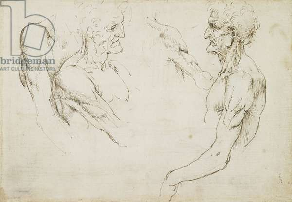 Verso: The surface anatomy of the shoulder, c.1510-11 (pen & ink on paper)