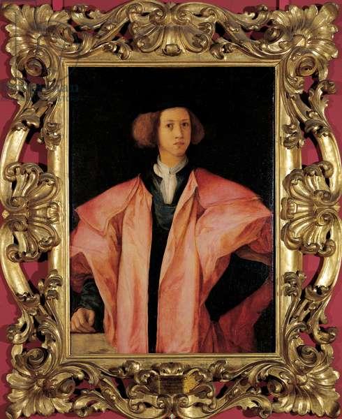 Portrait of Amerigo Antinori, 1531 (oil on panel)