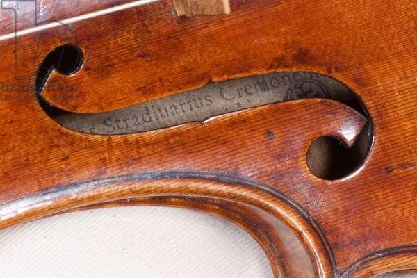 Violin (label viewed through the f-hole), Cremona, 'Kustendyke', 1699