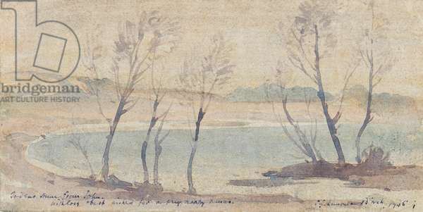 Trees and Bay, 1946 (w/c on paper)
