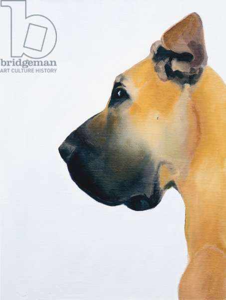 Great Dane, 2016, oil on board