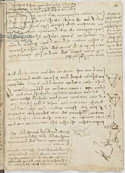 Birds Flight Code, c. 1505-06, paper manuscript, cc. 18, sheet 11 recto