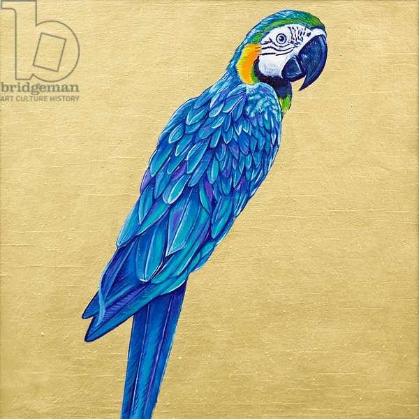 Blue Parrot, 2019, (oil on board)