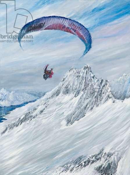 Antarctic Flier, 2015 (oil on canvas)