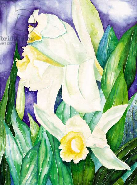 Night Orchids, 2007 (watercolor)