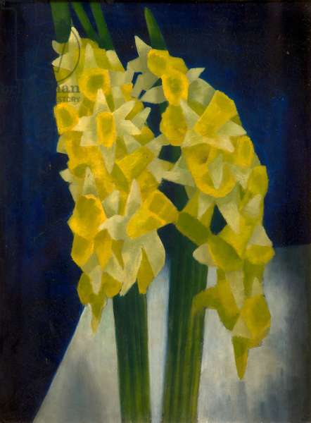 Daffodils, 1954 (oil on panel)