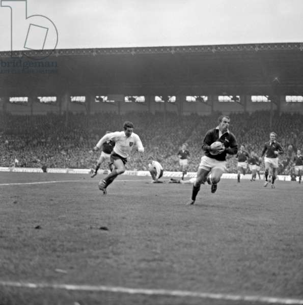 Rugby : Match Between France and South Africa in Colombes (France ) on November 15, 1968 (b/w photo)
