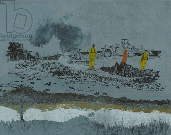 Lime on the land, 2014 (linocut and etching)