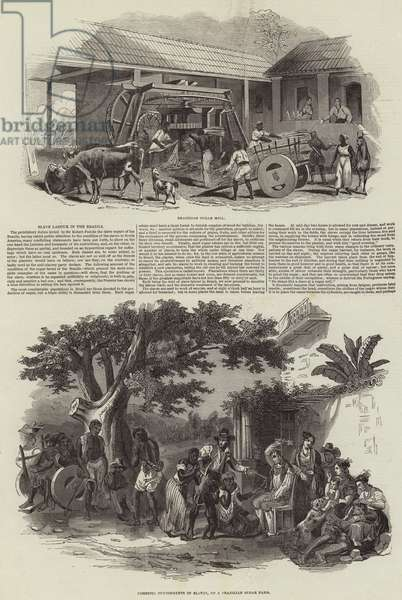 Slave Labour in the Brazil (engraving)