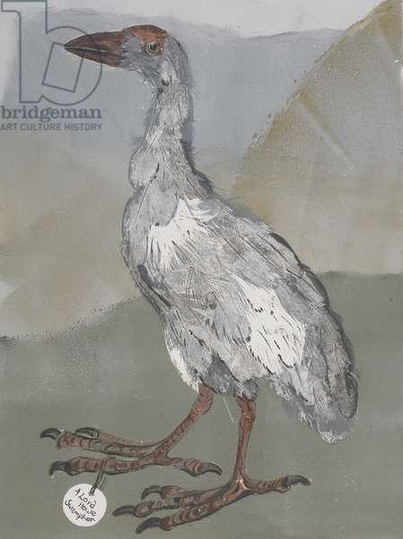 Swamphen, 2007, mono print on paper