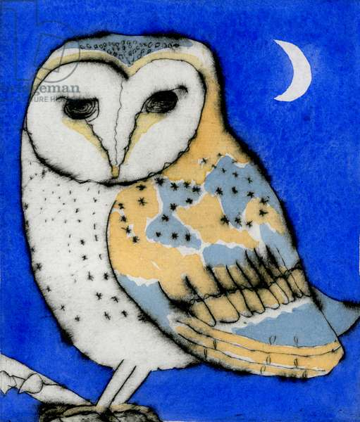 Night Owl, 2011 (drypoint and watercolour)