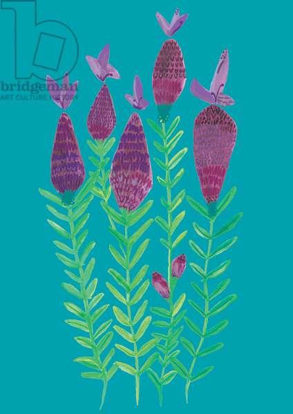 Lavender, watercolour, crayons & digital, 2018