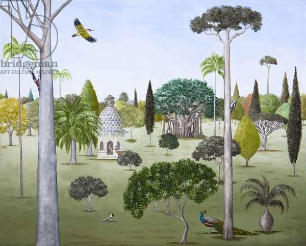 Woodpecker's Paradise