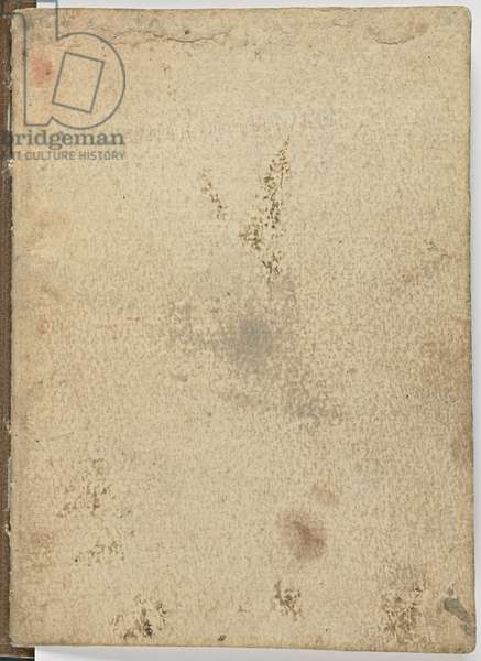 Code on the flight of birds, c. 1505-06, paper manuscript, cc. 18, Cover I