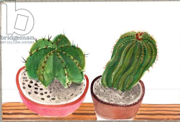 Cactus 7, 2012 (w/c on paper)