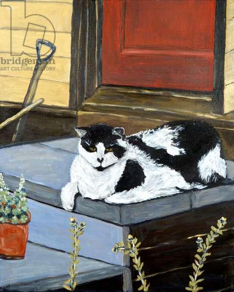 Neighbor's Cat, 2020 (acrylic on canvas)