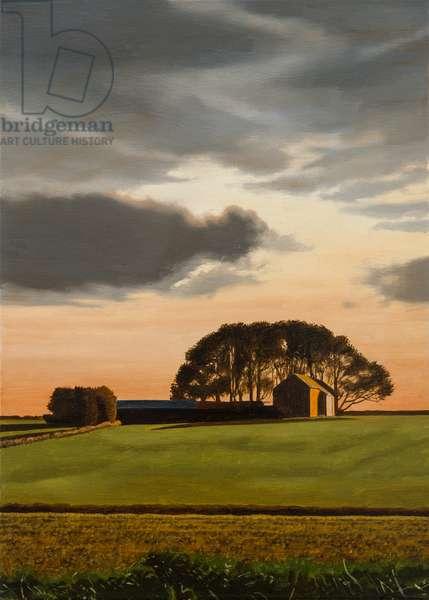 Littleton Wood Barn - Autumn, 2014 (oil on canvas)