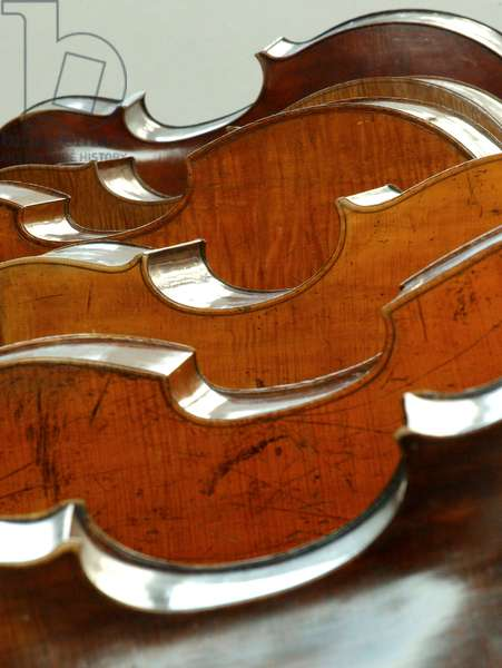A series of double bass