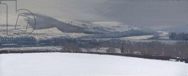 Langorse lake in snow january