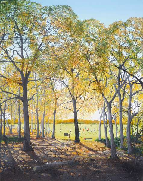 Through the Trees, 2012, (oil on canvas)